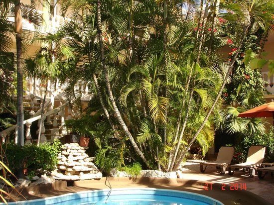 Aventura Mexicana: Hotel gardens