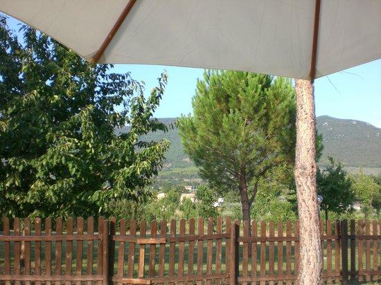 Vista dalla piscina foto di agriturismo il giardino dei - Il giardino dei ciliegi assisi ...