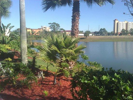 Doubletree By Hilton at the Entrance to Universal Orlando: zona piscina