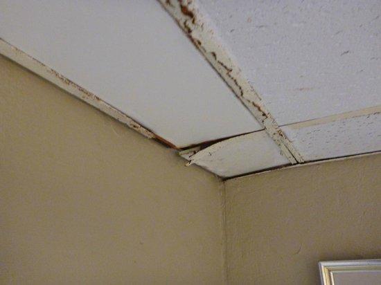 Plaza Hotel Curacao: Rusty ceiling frames