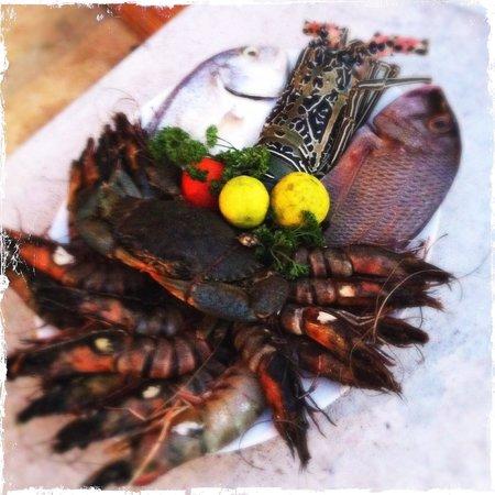 Malli's Seafood Restaurant : Todays catch.