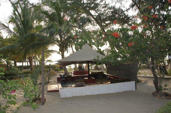 Le Teranga Gandiol: ...nel giardino...