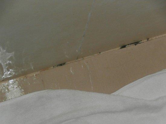 moisissure plafond salle de bain picture of singma