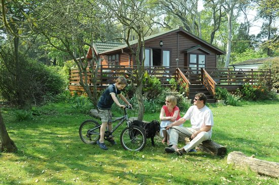 Cliff House Holiday Park: Cliff Top beach location on Suffolks Heritage Coast Camping, Touring, Self catering and lodges
