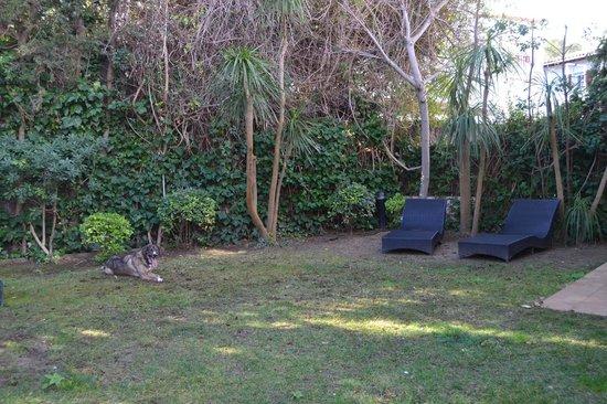 Hotel Los Globos: Jardín privado