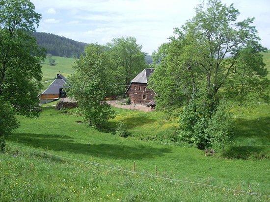 Schwarzwaldgasthaus Salenhof : Aussicht vom Balkon, Restaurant
