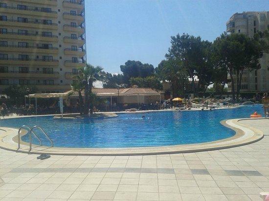BQ Belvedere Hotel : pool