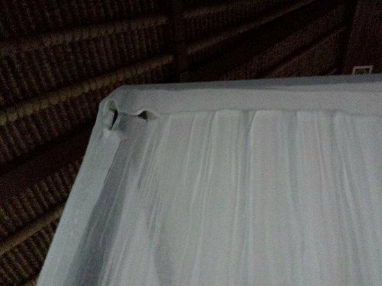 Mayaloka Villas : Torn Mosquito Netting