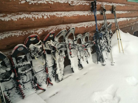 National Forest Lodge: Fresh snow and snowshoes at the ready.
