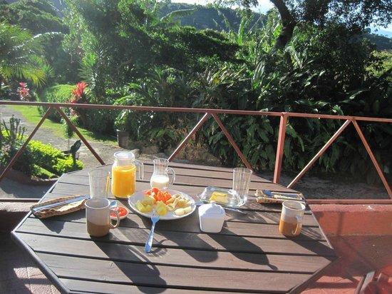 Hotel Mango Valley: Tasty breakfast in a beautiful setting