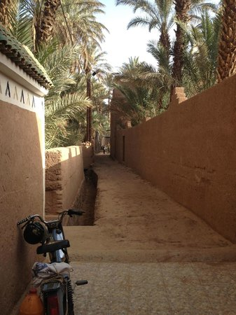 Riad Lamane: Path leading from parking lot to Riad entrance