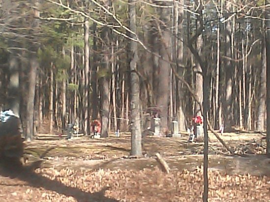 Rim Rock's Dogwood Cabins: The view of a very old cemetery, looking out of the kitchen window at Deer Run cabin.