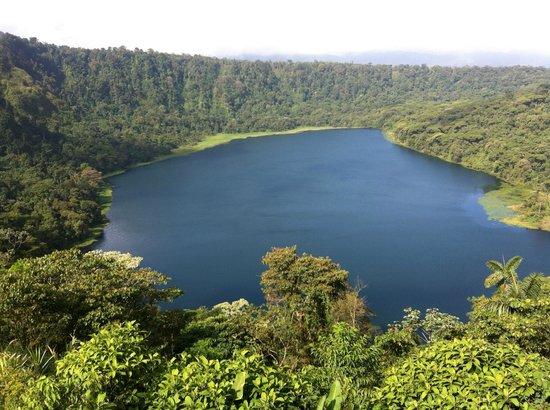Tirimbina, Costa Rica: Vista desde el restaurante de la Laguna de Hule