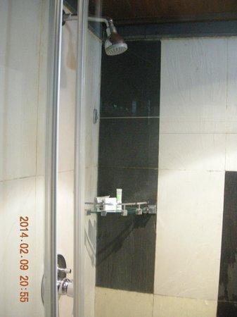 Hotel Grand Dhillon: Washroom