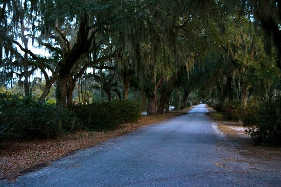 Savannah Historic District : Bonaventure