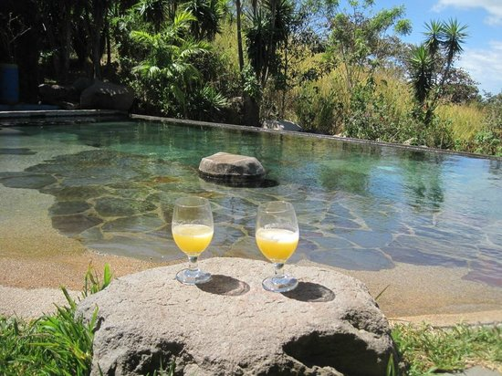 Cabins El Sol: Relaxing at the pool with fresh fruit juice