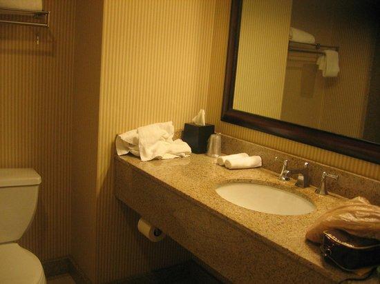 Sheraton Birmingham : Bathroom