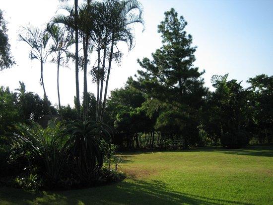 De Charmoy Estate Guest House: Grounds