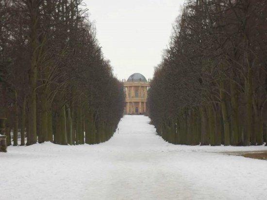 Potsdam's Gardens: Potsdam