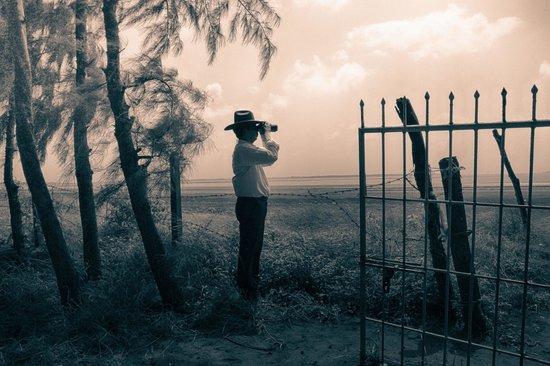 Palghar, India: Bird watching at Seashore