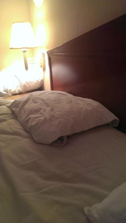 Oak Leaf Inn: Flat pillow falling apart and lumpy on by lamp