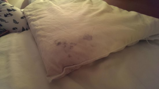 Oak Leaf Inn: Pillow stains