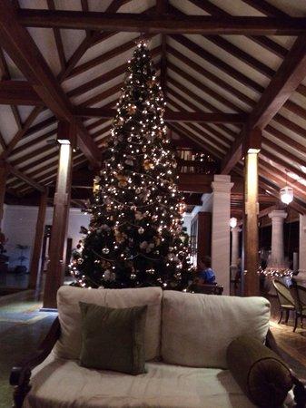 Uga Ulagalla: The Lobby