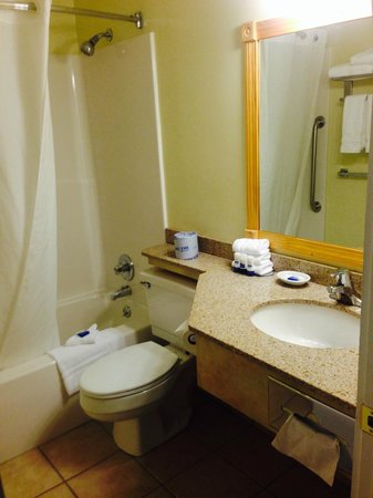 BEST WESTERN PLUS Windjammer Inn & Conference Center: Bathroom