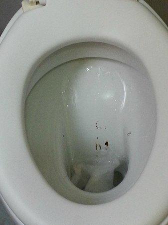 Hotel Elide : Dirty!