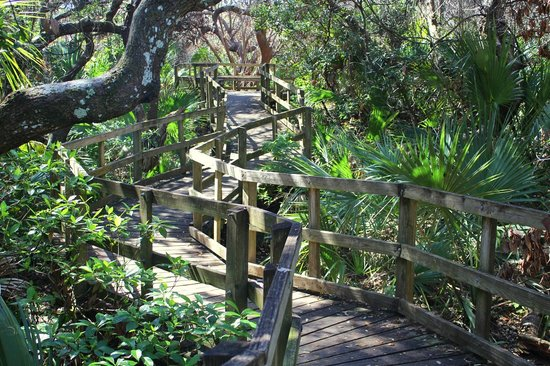 Lori Wilson Park Boardwalk Inside The Nature Trail