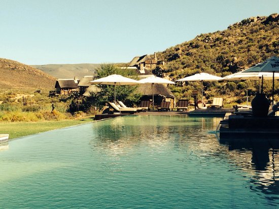 Aquila Private Game Reserve: The pool at Aquila