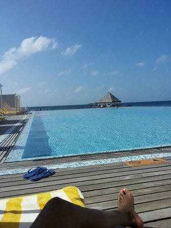 Coco Bodu Hithi : Main pool