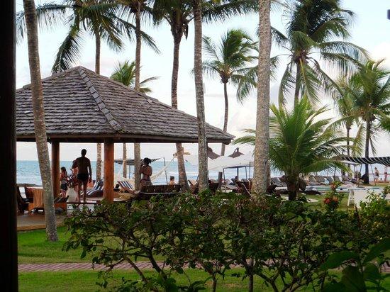 Arraial D'Ajuda Eco Resort: Pool View