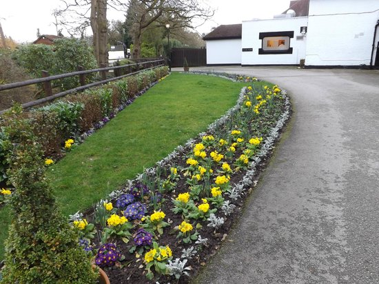 Macdonald Craxton Wood Hotel & Spa : flowers