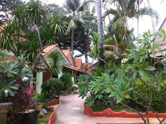 Chalala Samui Resort: Hotelanlage