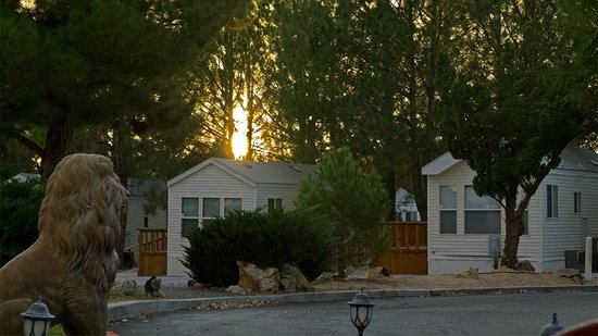 Preferred RV Resort: View of the Cabins