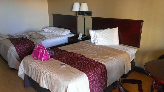 Sulaf Hotel LBV South : Camas en buen estado, cómodas y limpias