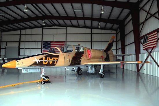 Stallion 51: Albatross L39 Jet