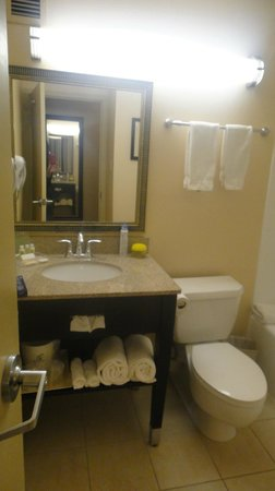 Holiday Inn Express Los Angeles-LAX Airport: Banheiro