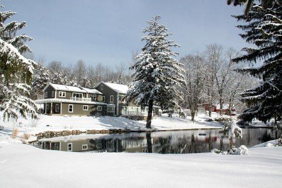 The RoseMary Inn : Across the Pond