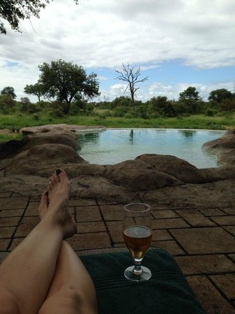 Motswari Private Game Reserve: afternoon down time at the pool