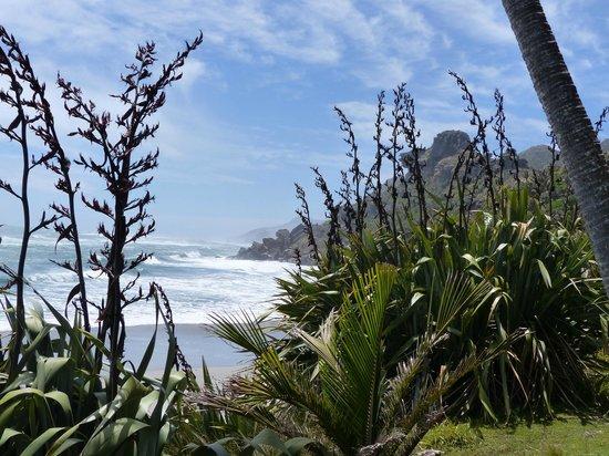 Westhaven Luxury Lodge : Beachwalk