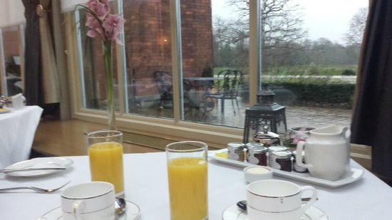 Rockliffe Hall: view from the breakfast table