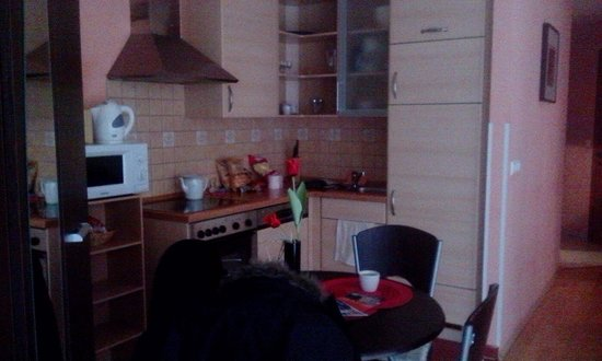 King Apartments Budapest: Kitchen area.  Hallway on right.
