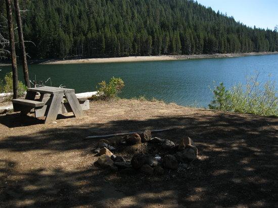 Camping on Lemolo Lake Resort 15 miles from Crater Lake