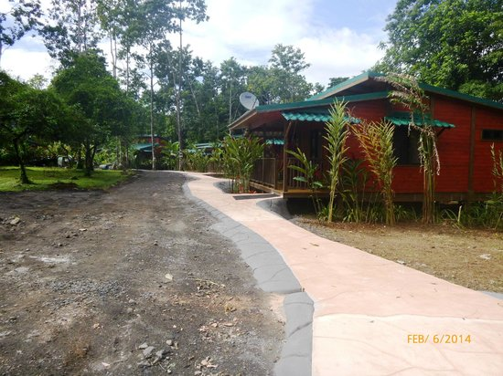 Blue River Resort & Hot Springs: Cabinas and parking area.