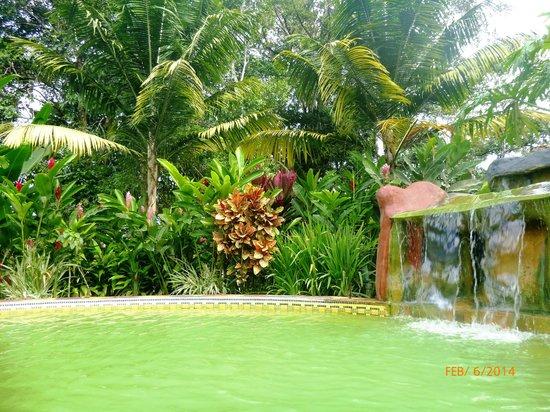 Blue River Resort & Hot Springs: Natural Hot Spring Pool