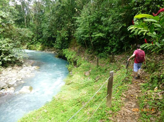 Blue River Resort & Hot Springs: Hiking path down to the Rio Azul (Blue River)