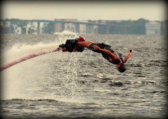 Power Up Watersports: Dolphin Dives