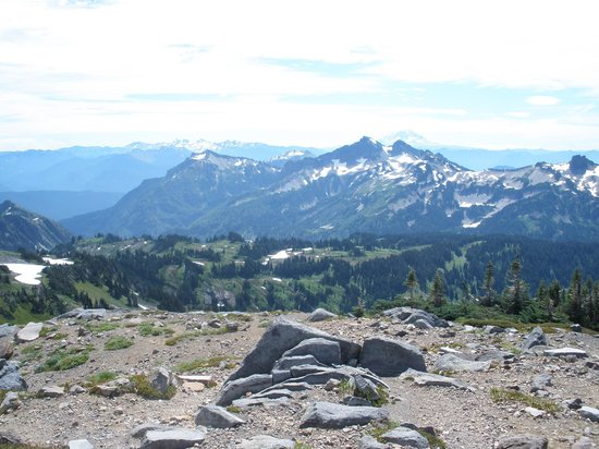 Skyline Trail : Mount Hood in the background